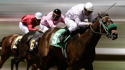 Bets10 At Yarışı